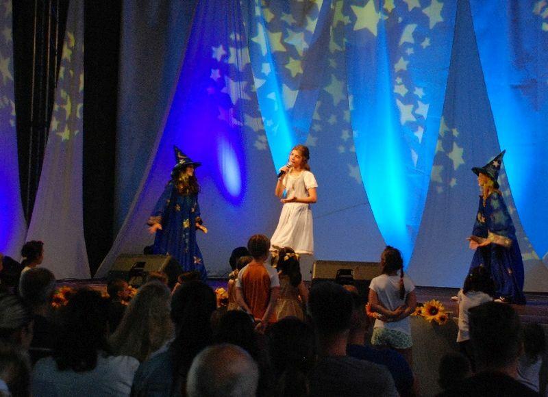 Festival FeNS 2017 ... (Foto: Agencija Plahutnik)